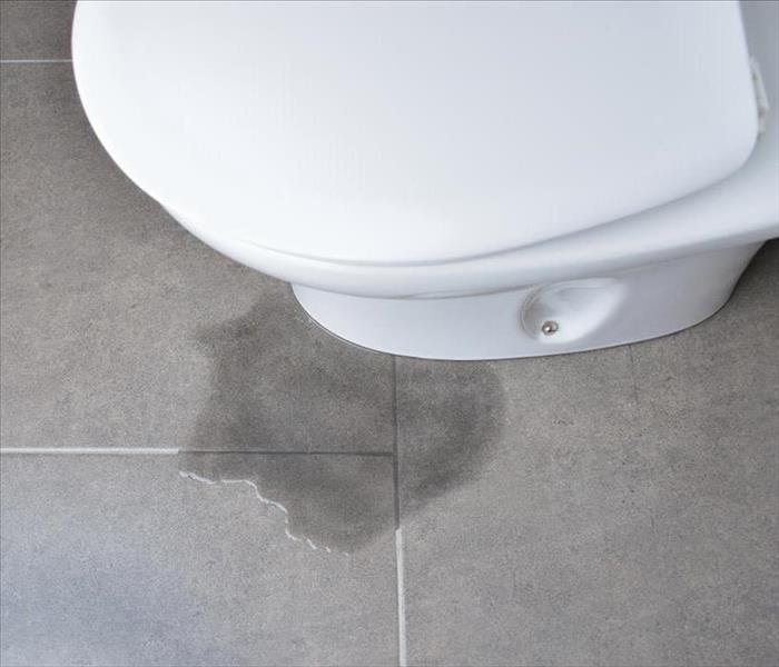 Commercial 4 Steps for Repairing Water Damage From a Flooded Toilet