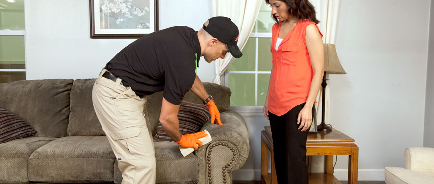Ebensburg, PA carpet upholstery cleaning